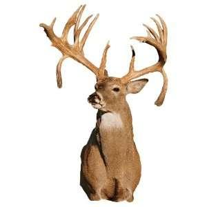 Mossy Oak Graphics 13012 Deer Double Drop Tine Buck Cut