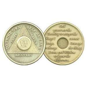 15 Year Bronze AA Birthday   Anniversary Recovery Medallion / Coin