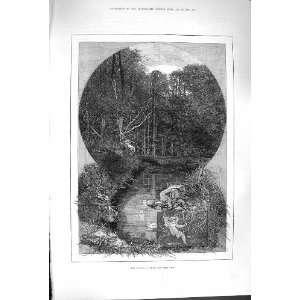 1880 AUGUST SCENE TREES FOREST RIVER ROCKS FINE ART