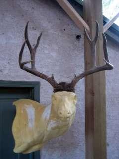 4x4 MULE DEER RACK antlers whitetail moose elk taxidermy mount sheds