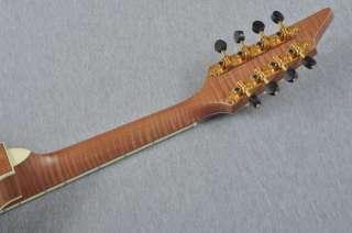 Breedlove Master Class Alpine Mandolin   Made in USA Custom Shop