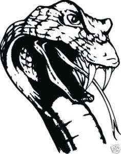 COBRA SNAKE HEAD #S214 DECAL GRAPHIC CAR TRUCK HOOD