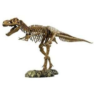 Giant T.rex Skeleton Kit: Toys & Games