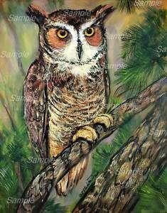GREAT HORNED OWL GICLEE of Painting BIRD Kasheta ART