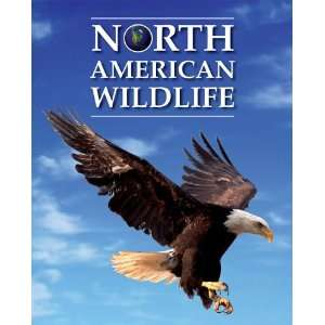 North American Wildlife (9780761479383): Randall D. Mooi: Books