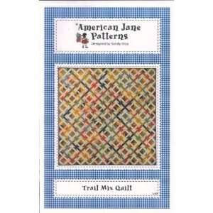 Trail Mix Quilt   quilt pattern: Home & Kitchen