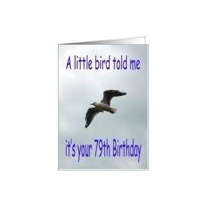 Happy 79th Birthday Flying Seagull bird Card Toys & Games