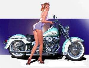 ROLLING THUNDER~ SOFTAIL 240~250 FRAME~Harley~S&S MOTOR