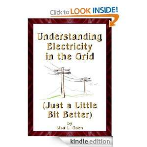 Understanding Electricity in the Grid (Just a Little Bit Better): Lisa