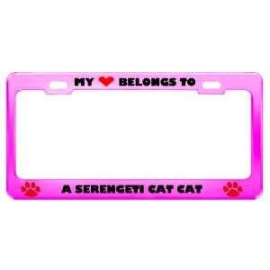 A Serengeti Cat Cat Pet Pink Metal License Plate Frame Tag