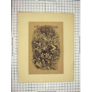 C1790 C1900 Midsummer Nights Dream Shakespere Print Home & Kitchen