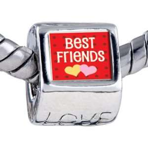 Style Bead Best Friends Beads Fits Pandora Bracelet Pugster Jewelry