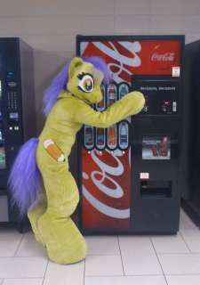 My Little Pony Friendship is Magic Costume Fursuit Original Character