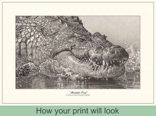 Wildlife Art Signed Reptile Pencil Drawing Picture New Print Alligator