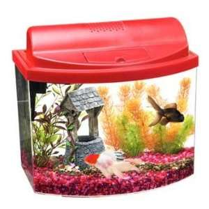 Red (Catalog Category Aquarium / Desk Top Aquariums) Pet Supplies