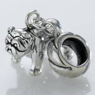 Sterling Silver European Style Charm College Bead