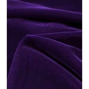 Fairvel Regal Purple Velvet Fabric: Arts, Crafts & Sewing